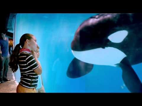 Sea World commercial - actress ELSA MARTINEZ 2013