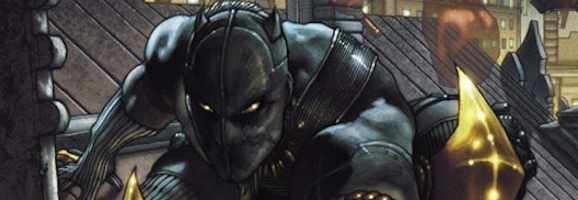 Black Panther crouched on a rooftop.
