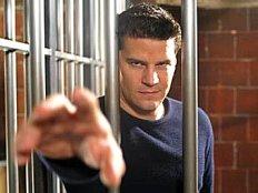 Angelus behind bars
