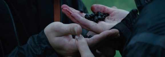 "Katniss and Peeta threaten to eat the deadly ""nightlock"" berry unless they both get to go home in the first ""Hunger Games"""