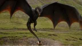 ASOIAF Dragon