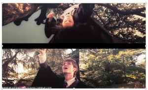 James Potter bullying Snape