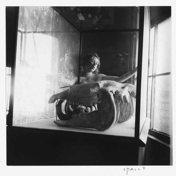 """Space2, Providence, RI"" (1975-76) In this self-portrait, Woodman appears with her head tilted back, mouth slightly agape, and arms stretched wide, her fingers gripping a large vitrine, inside which sits a large, toothy animal skull. She clearly has seduction on her mind, but in this particular image, her naked body is hidden from the viewer. The photo is at once puzzling, slightly unsettling, and incredibly seductive."