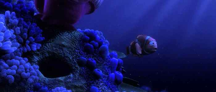 Finding Nemo (5)