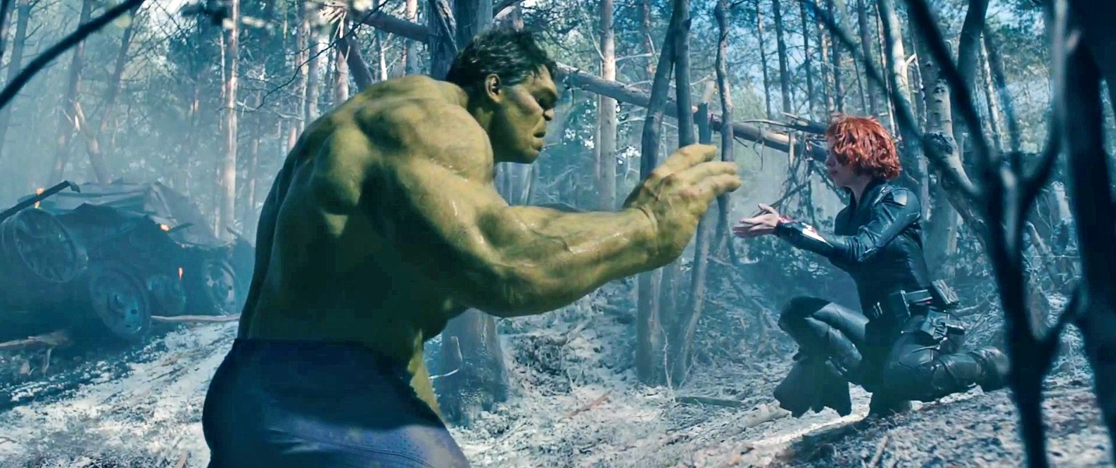 Black Widow and Hulk showing a connection in Avengers: Age of Ultron