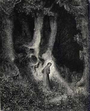 Dante finds himself in a dark wood