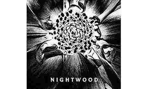 Nightwood Djuna Barnes cover