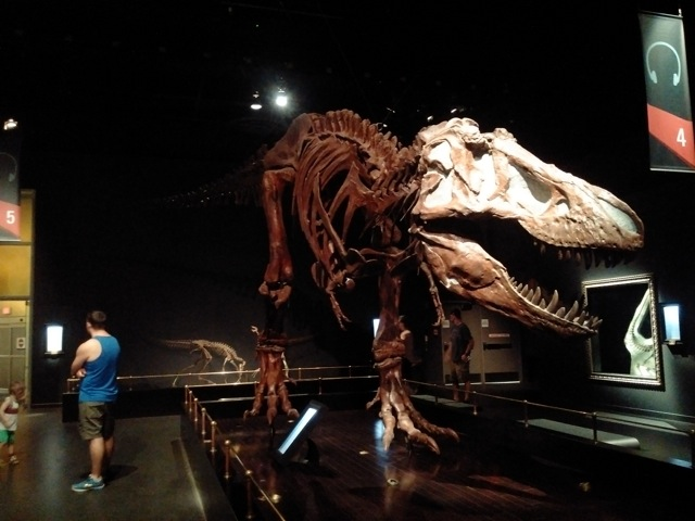 Tiranosaurus Rex. Lords of the Land installation view. Photo by Ana Ruiz, 2016.
