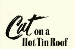 Cat on a Hot Tin Roof: Internal Guilt