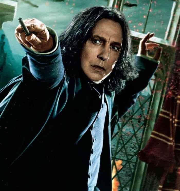 Harry Potter: Books vs  Movies   The Artifice